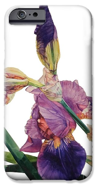 Botanic Illustration iPhone Cases - Iris Rhapsody iPhone Case by Greta Corens