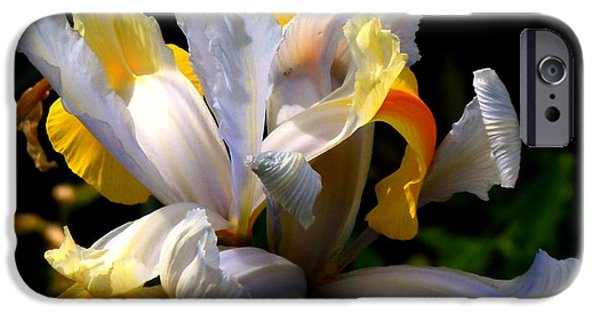 Spring iPhone Cases - Iris iPhone Case by Rona Black