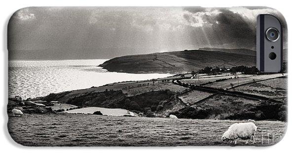 Grazing Sheep iPhone Cases - Irish Sea and Coast iPhone Case by Thomas R Fletcher