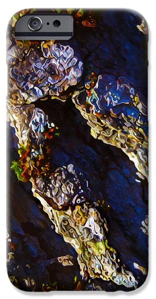 Abstract Digital Photographs iPhone Cases - Ironwood Bark with Moss iPhone Case by Bill Caldwell -        ABeautifulSky Photography