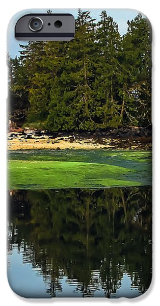 Island Reflection iPhone Case by Robert Bales