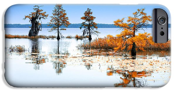 Tree Art Print Mixed Media iPhone Cases - Isle of Peace - North Carolina iPhone Case by Dan Carmichael