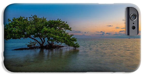 Best Sellers -  - Mangrove Forest iPhone Cases - Isolation iPhone Case by Chad Dutson