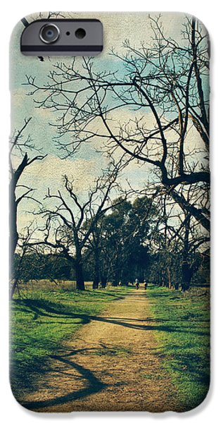 Bare Tree iPhone Cases - It All Depends iPhone Case by Laurie Search