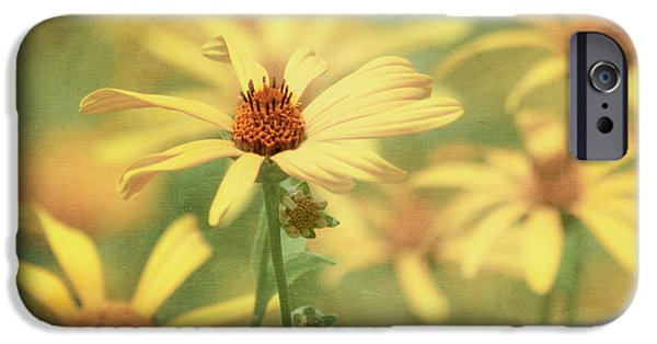 Kim Photographs iPhone Cases - It Must Be iPhone Case by Kim Hojnacki