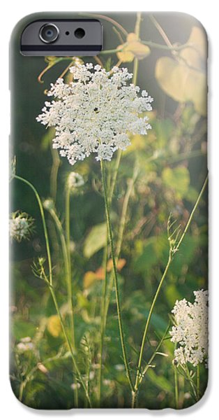 Flora iPhone Cases - It Was a Summer of Love iPhone Case by Laurie Search