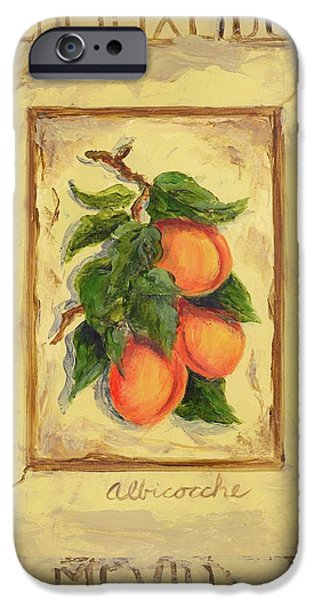 Apricots iPhone Cases - Italian Fruit Apricots iPhone Case by Marilyn Dunlap