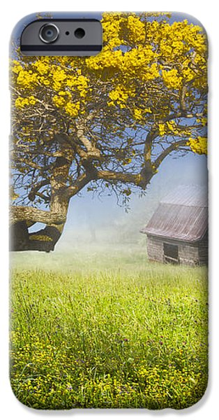 It's a Beautiful Day iPhone Case by Debra and Dave Vanderlaan