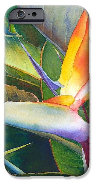 Its a Bird iPhone Case by Judy Mercer