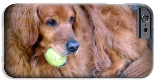Dog With Ball iPhone Cases - Its Mine  iPhone Case by Susan Garren