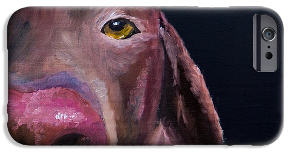 Chocolate Lab iPhone Cases - Ive Got An Eye On You iPhone Case by Roger Wedegis