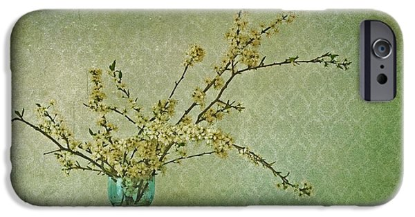Cherry Blossoms Photographs iPhone Cases - Ivory and Turquoise iPhone Case by Priska Wettstein