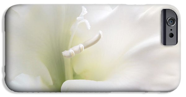 Gladiolas iPhone Cases - Ivory Gladiola Flower iPhone Case by Jennie Marie Schell
