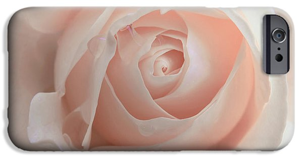 Peach Roses iPhone Cases - Ivory Peach Pastel Rose Flower iPhone Case by Jennie Marie Schell
