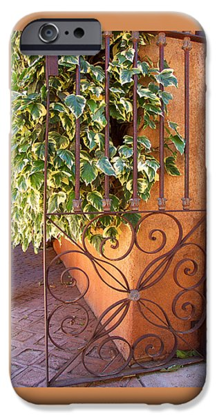 Ivy And Old Iron Gate iPhone Case by Ben and Raisa Gertsberg