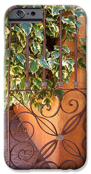 Summer iPhone Cases - Ivy And Old Iron Gate iPhone Case by Ben and Raisa Gertsberg