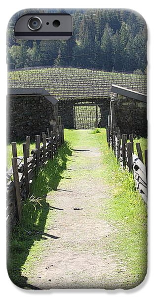 Jack London Ranch Winery Ruins 5D22180 iPhone Case by Wingsdomain Art and Photography