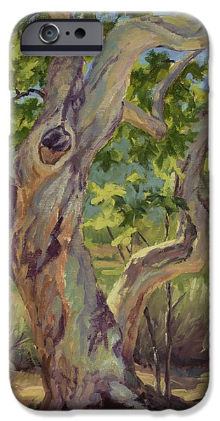 Tree. Sycamore iPhone Cases - Spring Sycamore iPhone Case by Jane Thorpe