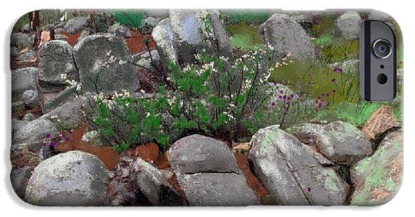 Prescott Mixed Media iPhone Cases - Janies Rock garden 1 iPhone Case by Craig Nelson