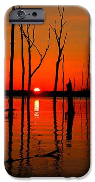 January Sunrise iPhone Case by Raymond Salani III