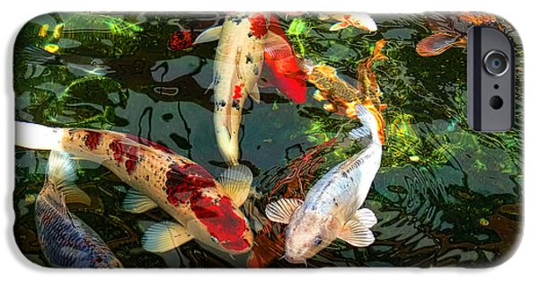 Animal Photographs iPhone Cases - Japanese Koi Fish Pond iPhone Case by Jennie Marie Schell