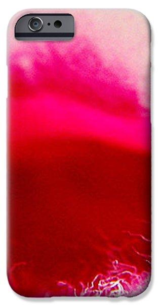 Jasmine Kiss iPhone Case by Ben and Raisa Gertsberg