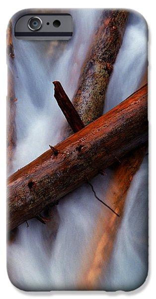 JASPER - BEAUTY CREEK LOGS iPhone Case by Terry Elniski