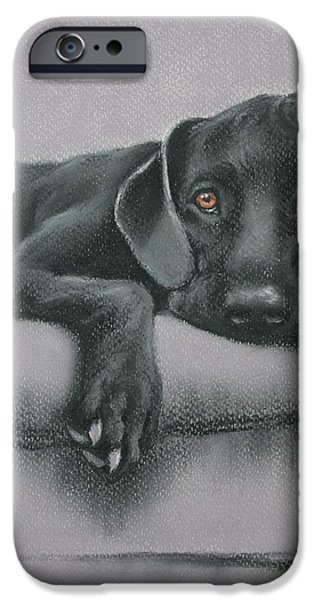 Black Dog iPhone Cases - Jasper iPhone Case by Cynthia House