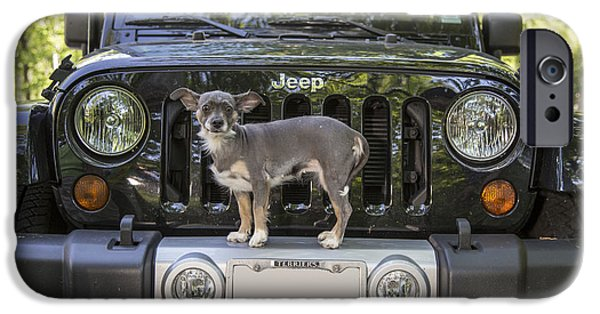 Jeep iPhone Cases - Jeep Dog iPhone Case by Edward Fielding