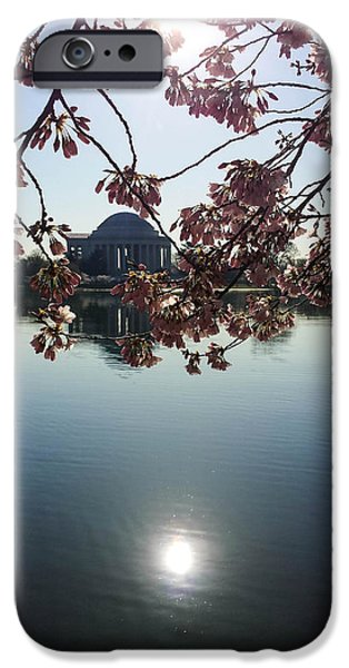 Washingtondc iPhone Cases - Jefferson Memorial Through the Cherry Blossoms  iPhone Case by Debra Bowers