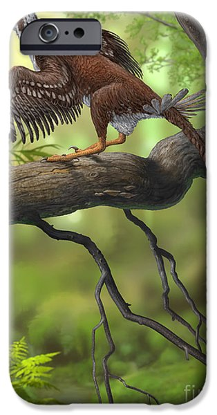Birds On Limbs iPhone Cases - Jeholornis Prima Perched On A Tree iPhone Case by Sergey Krasovskiy