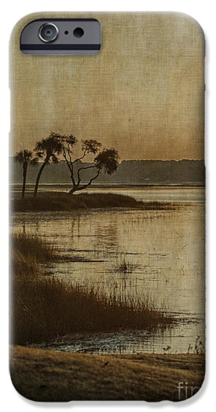 Tidal Creek iPhone Cases - Jenkins Creek Dawn iPhone Case by Terry Rowe