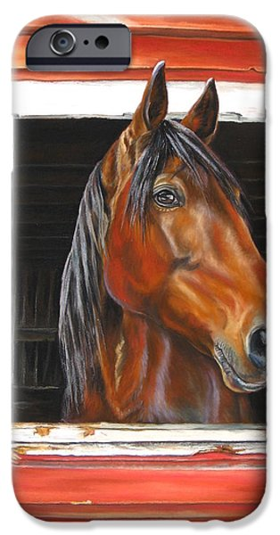 Horse Racing Pastels iPhone Cases - Jenny In The Window iPhone Case by Marni Koelln