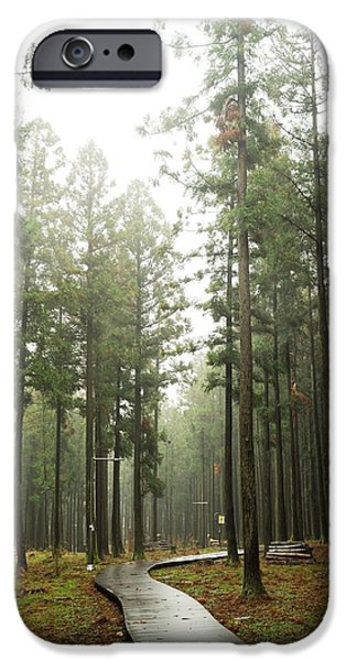 Fog Mist iPhone Cases - Jeolmul Nature forest iPhone Case by Sihyeon Park