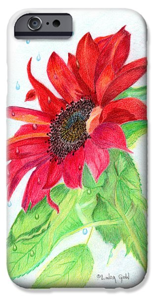 Jesus Drawings iPhone Cases - Jesus Wept Red Sunflower iPhone Case by Linda Ginn
