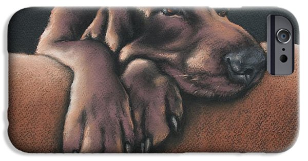 Puppy Pastels iPhone Cases - Jethro iPhone Case by Cynthia House