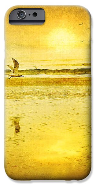 JOGGING ON BEACH WITH GULLS iPhone Case by Theresa Tahara