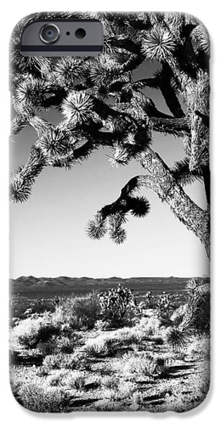 National Preserves iPhone Cases - Joshua Tree bw iPhone Case by John Rizzuto