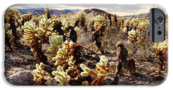 Desert Scape iPhone Cases - Joshua Tree National Park 3 iPhone Case by Glenn McCarthy Art and Photography