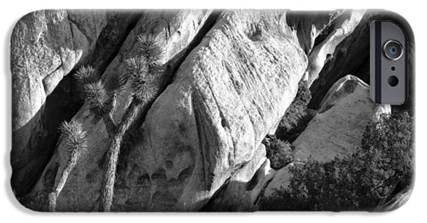 Cslanec iPhone Cases - Joshua Tree Nevada iPhone Case by Christian Slanec