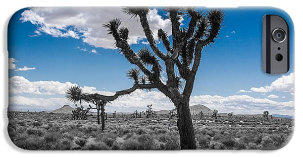 Shower Curtain iPhone Cases - Joshua Tree part2 iPhone Case by  ILONA ANITA TIGGES - GOETZE  ART and Photography