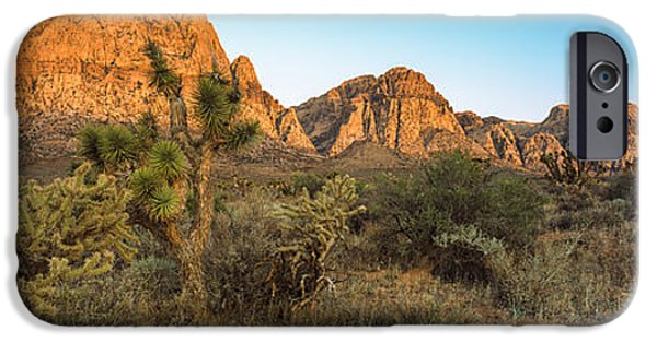 Red Rock iPhone Cases - Joshua Trees In A Desert, Red Rock iPhone Case by Panoramic Images