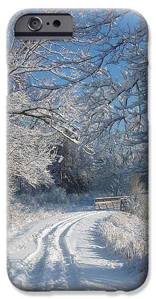 Journey Into Winter iPhone Case by Teresa Schomig