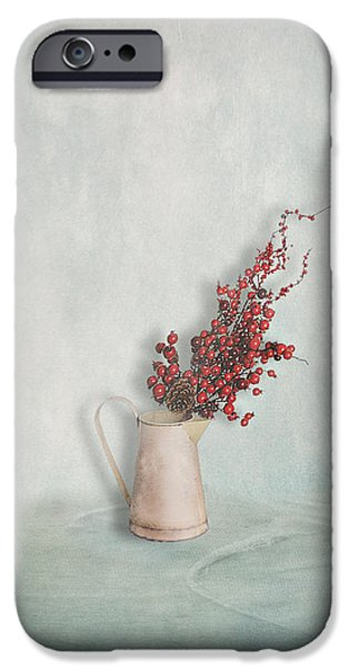 Interior Still Life iPhone Cases - Jug with Red Berry Branch  iPhone Case by Artskratches