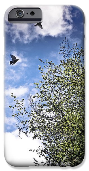Animals Photographs iPhone Cases - June Freedom iPhone Case by Jan Bickerton