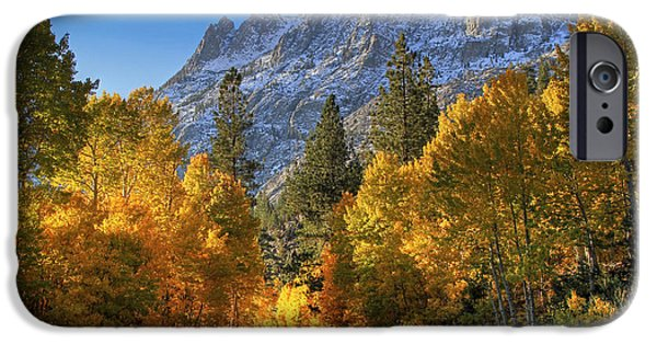 Fall iPhone Cases - June Lake Loop iPhone Case by Donna Kennedy