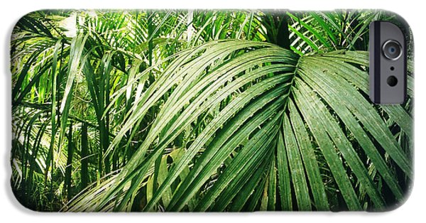 Raining iPhone Cases - Jungle foliage iPhone Case by Les Cunliffe