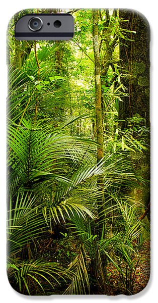 Jungle scene iPhone Case by Les Cunliffe