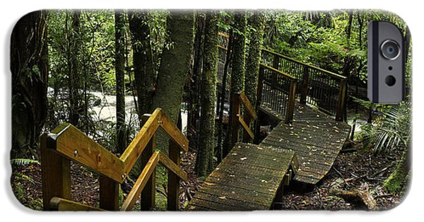 Pathway iPhone Cases - Jungle walkway iPhone Case by Les Cunliffe