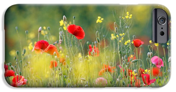 Macro iPhone Cases - Just a Perfect Day iPhone Case by Roeselien Raimond